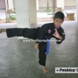 Silat is the national martial art in Malaysia. The system of silat training methodology is based from the human geometrical movements and patterns. Silat doesn't incorporate the animal styles […]